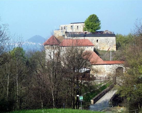 Burgruine Rechberg